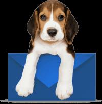 dog_on_letter